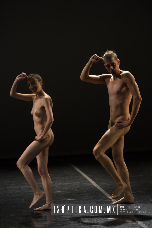 Dance Dance_Animale_Foto_Gabriel Ramos_Isoptica