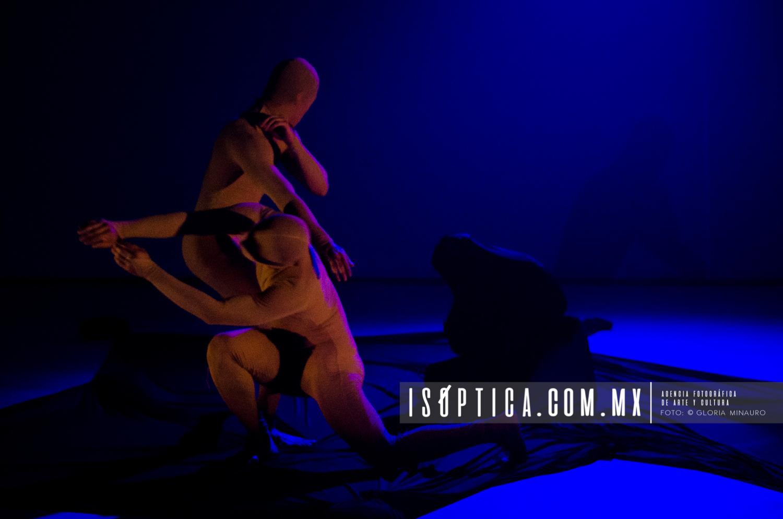 Halo,Diseno Coreografo,  Carolina Jimenez, Salon de Danza de la