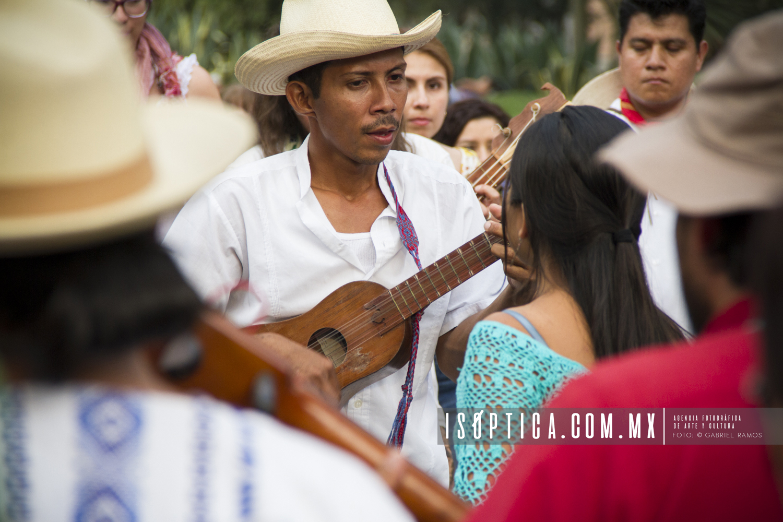 5to Encuentro de Son Jarocho_Foto Gabriel Ramos_Isoptica