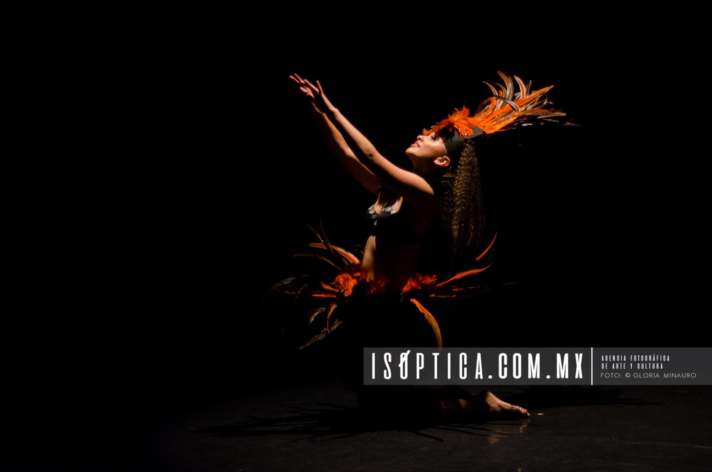 DID 2017 UNAM, Salon de Danza 30 abril, Alexia Rodriguez, Foto:G