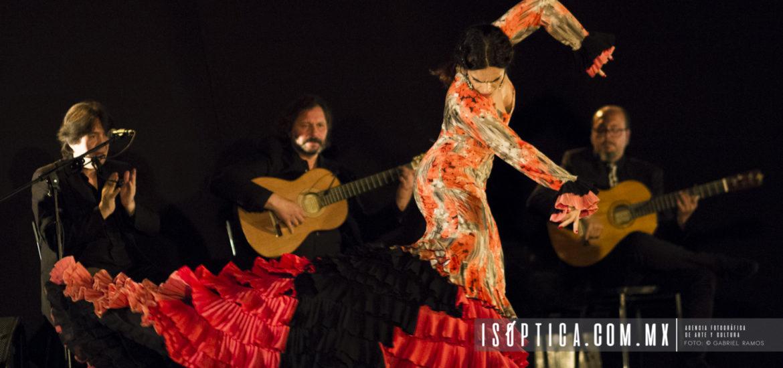 Una gala ib rica inaugura el foro internacional de danza for Jardin guerrero queretaro